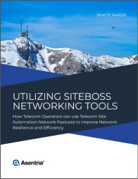utilizing networking tools white paper cover